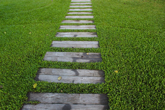 garden path in the middle of lawn grass